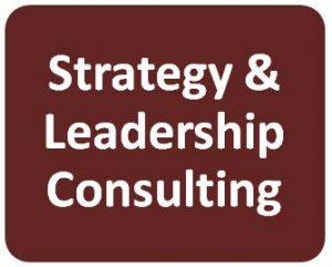 Strat & Leadership Consult